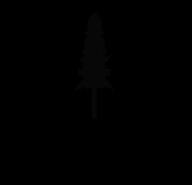 Logo Holzbegehrt schwarz und transparent